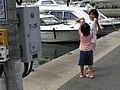 Hinase Port - Bizen,Okayama,Japan 岡山県備前市日生港 341.JPG