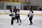 Hockey 20081019 (11) (2957571440).jpg