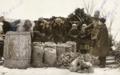 Holodomor Novo-Krasne Odessa 11 1932.png