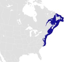 Homerus americanus distribution.png