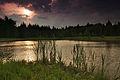 Horní rybník u obce Suchý, Velenov, okres Blansko (02).jpg