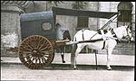 Horse drawn carriage (6025232754).jpg