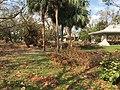 Hurricane Irma Cleanup (23543091588).jpg