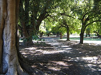 Hyde Park, Perth - Image: Hyde Park Perth 03 gobeirne