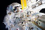 ISS-48 EVA (b) Jeff Williams atop PMA-2 at the Harmony module.jpg