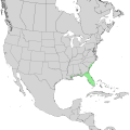 Ilex cassine range map 1.png