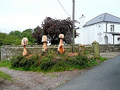 Imaginative use of tree stumps - geograph.org.uk - 1431859.jpg