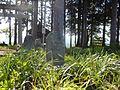 Imozawa, Tokamachi, Niigata Prefecture 949-8405, Japan - panoramio.jpg