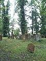 Jüdischer Friedhof Endingen 1.JPG
