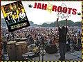 JahRootsNewCRF08-1.jpg