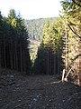 Jakubany, Slovakia - panoramio (2).jpg
