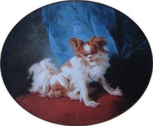 King Charles Spaniel - Portrait of a King Charles Spaniel, by Jean-Baptiste Huet  1778
