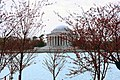 Jefferson Memorial - tidal basin 01 - 2012-03-15 (6848930762).jpg