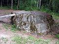 Juodasis akmuo1 2006-07-12.JPG