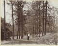 KITLV - 3707 - Lambert & Co., G.R. - Singapore - Man on the road to the fort on Riau (Tanjung Pinang) - circa 1895.tif
