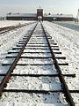 KL Auschwitz-Birkenau (12676474464).jpg
