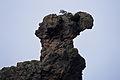Kamelhovederne (Bornholm) 3.jpg