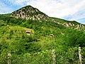 Kanjon Belog Rzava - panoramio (1).jpg