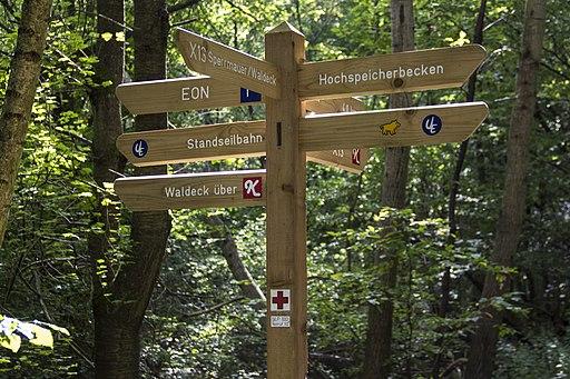 Kellerwald-Edersee (UNESCO-Weltnaturerbe Alte Buchenwälder)