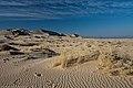 Kelso Dunes, 2012.jpg