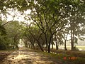 Khlong Nung, Khlong Luang District, Pathum Thani 12120, Thailand - panoramio (4).jpg