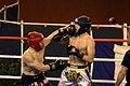 Kick Boxing Brest 09 02 2014 016.JPG