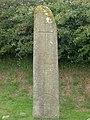 Kilnasaggart Stone - geograph.org.uk - 257811.jpg
