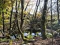 Kimigahatacho, Higashiomi, Shiga Prefecture 527-0202, Japan - panoramio (42).jpg