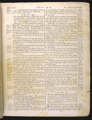 Genisis 3 of The Holy Bible, King James versio...