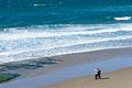 Kite Flyers on Moolack Beach.jpg