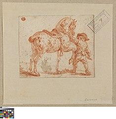 Knaap houdt een paard in bedwang