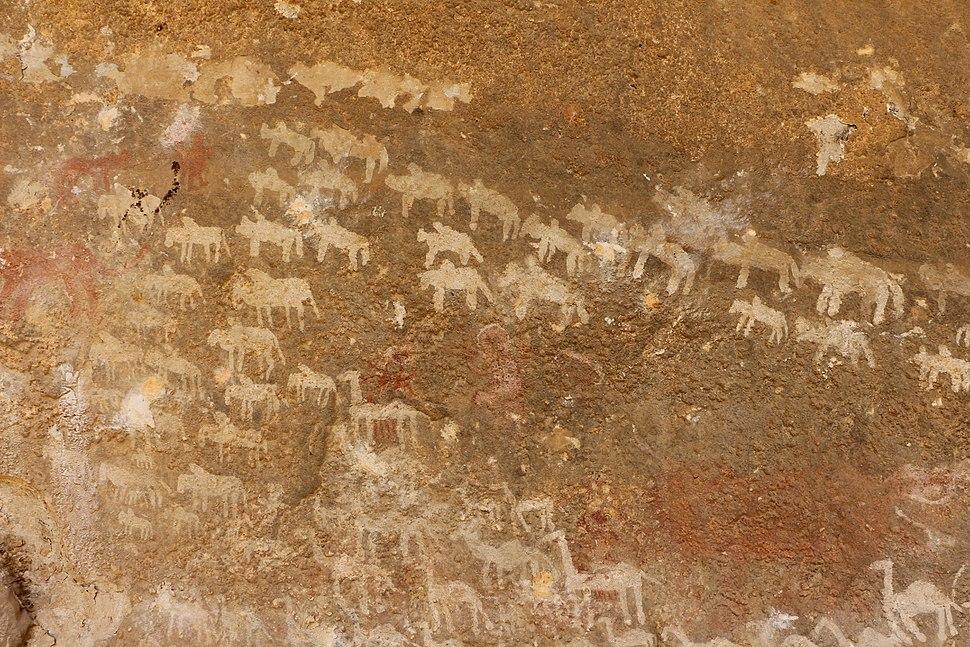 Kohaito, grotta di adi alauti con pitture rupestri databili al 2500 ac ca. 14 bestiame