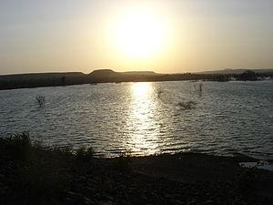 Koyna River - Koyna River