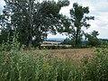 Krajobraz Wzgórz Strzelińskich - panoramio (1).jpg