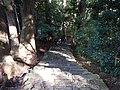 Kumano Kodo pilgrimage route Kumano Hayatama Taisha World heritage 熊野古道 熊野速玉大社11.JPG