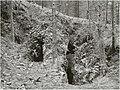 Kupfergrube Sadisdorf Zinnklüfte 1930.jpg