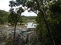 Kuranda QLD 4881, Australia - panoramio (52).jpg
