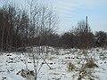 Kurovskoye, Kaluzhskaya oblast', Russia, 249850 - panoramio (4).jpg
