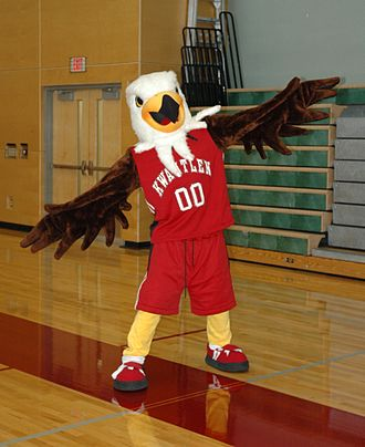 Kwantlen Polytechnic University - Kwinten is the mascot for the Kwantlen Eagles athletics program