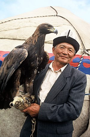 A Kyrgyz hunter with his golden eagle, in fron...