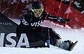 LG Snowboard FIS World Cup (5435316061).jpg