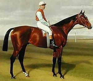 "Ladas (horse) - ""Ladas, winner of the 1894 Derby"" painting by Emil Adam"