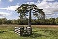 Lafayette Meeks grave VA1.jpg