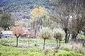 Lago di Posta Fibreno.jpg