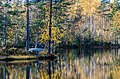 Lake, Boat, Yellow leaves. - panoramio.jpg