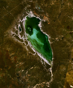Lake Buchanan (Queensland) satellite image.png