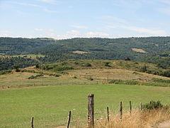 Landscape-IMG 7146.JPG