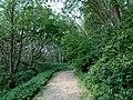 Landschaftsschutzgebiet Wäldchen bei Buer Melle Datei 16.jpg