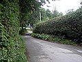 Lane outside Dol-llys Farm - geograph.org.uk - 968357.jpg