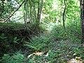 Langenfeld Schwanenmühle 0027.jpg